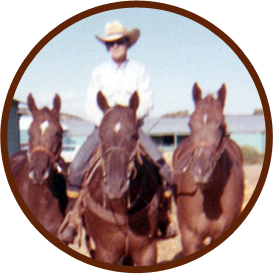 horse hoof care